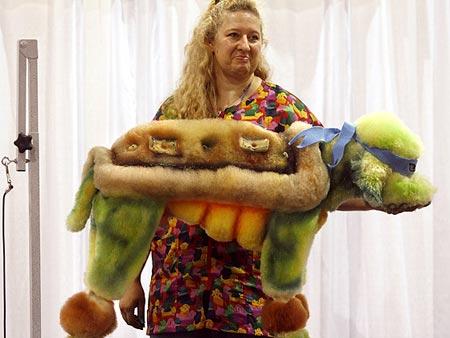 Disfrazado de tortuga ninja (concretamente Rafael)