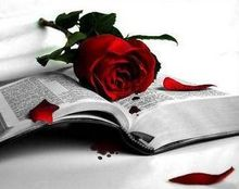 rosa_libro